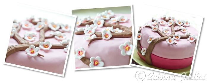 http://www.cuisine-addict.com/wp-content/uploads/2012/03/tuto_f10.jpg