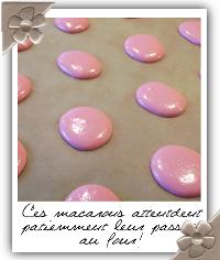 http://www.cuisine-addict.com/wp-content/uploads/2012/04/006-cr10.png